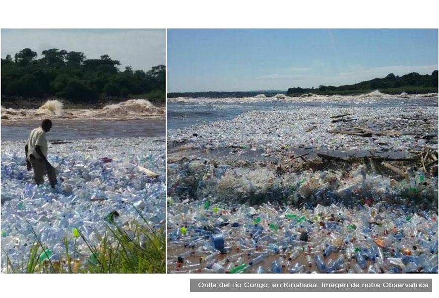 Cómo Tirar La Basura Sin Bolsas De Plástico