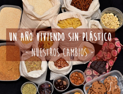 Los '12 cambios' que hemos hecho durante un año viviendo sin plástico